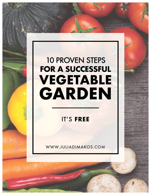 10 Proven Steps for a Successful Vegetable Garden