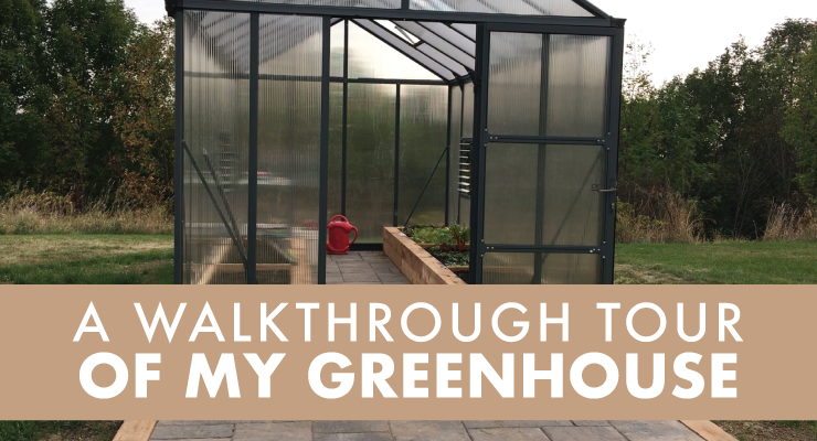 A Walkthrough Tour of My Greenhouse