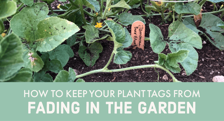How to Keep Your Plant Tags from Fading in the Garden