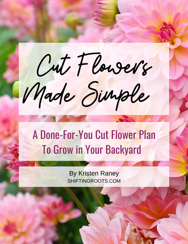 Cut Flowers Made Simple