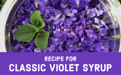 Recipe for Classic Violet Syrup