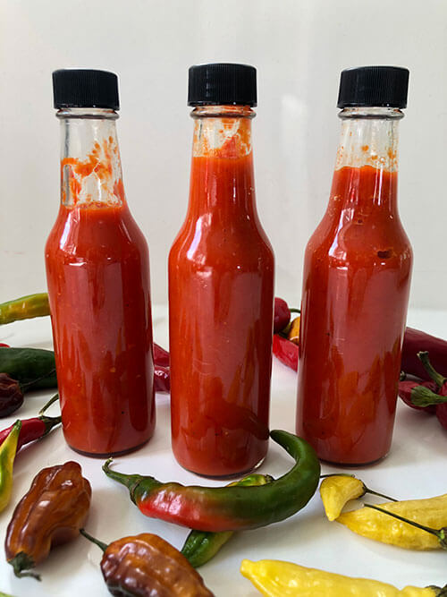 A Recipe for Fermented Hot Sauce