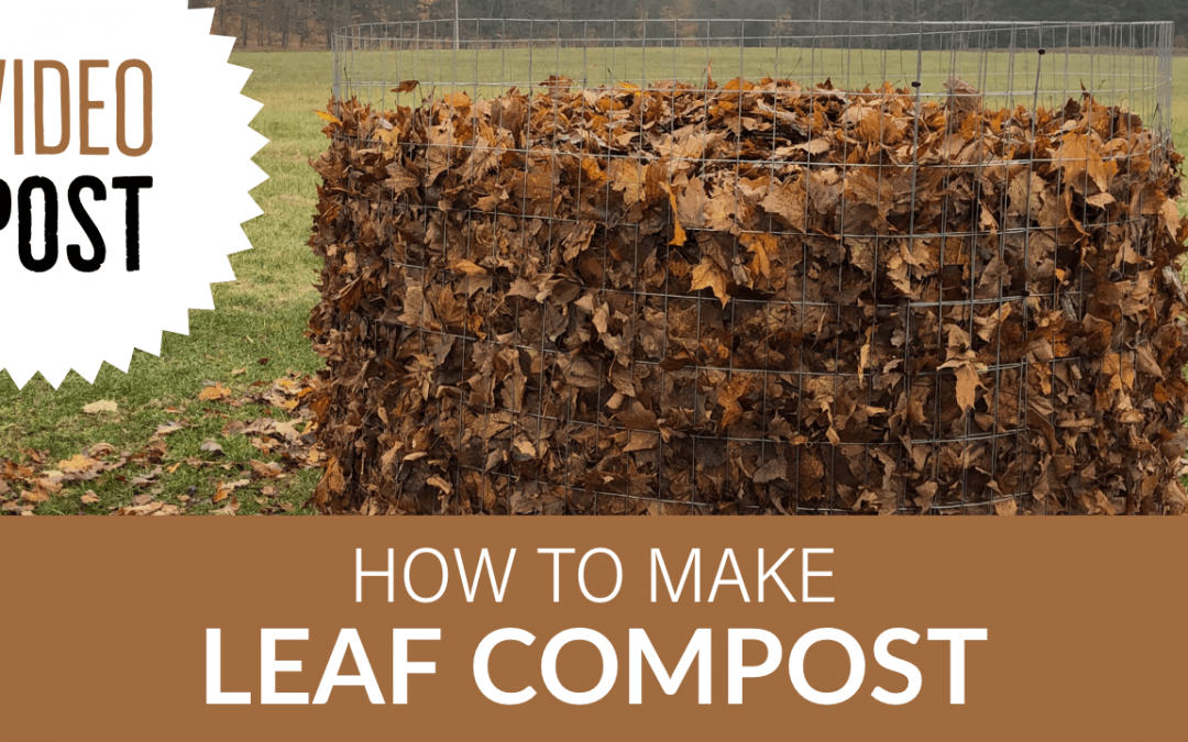 [Video] How to Make Leaf Compost