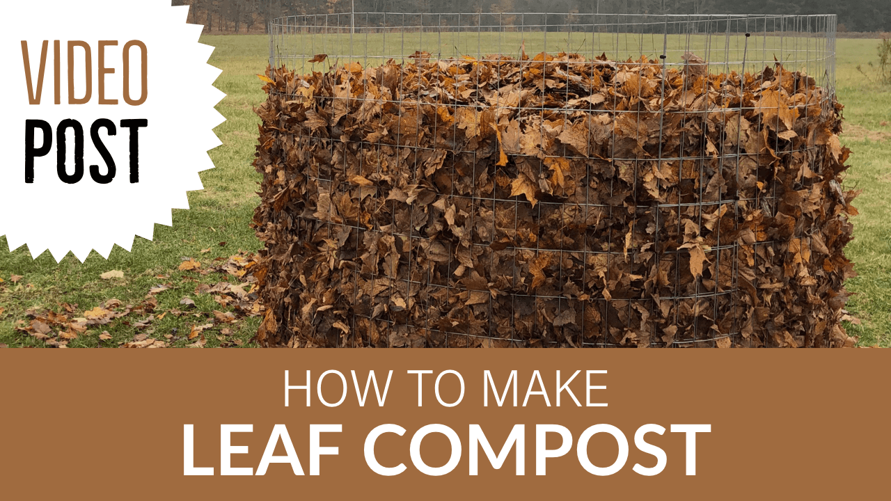 How to Make Leaf Compost
