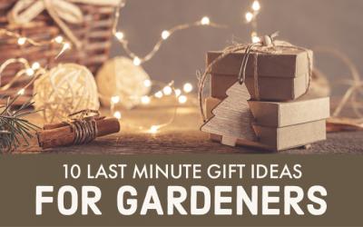10 Last Minute Gift Ideas for Gardener's