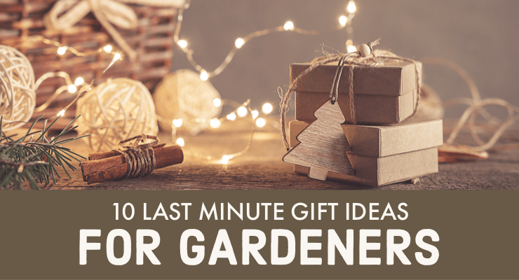 10 Last Minute Gift Ideas for Gardener's