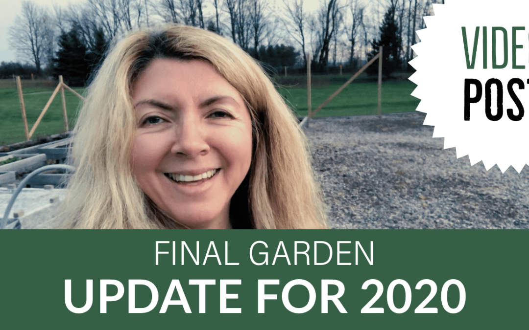 [Video] Final Garden Update for 2020
