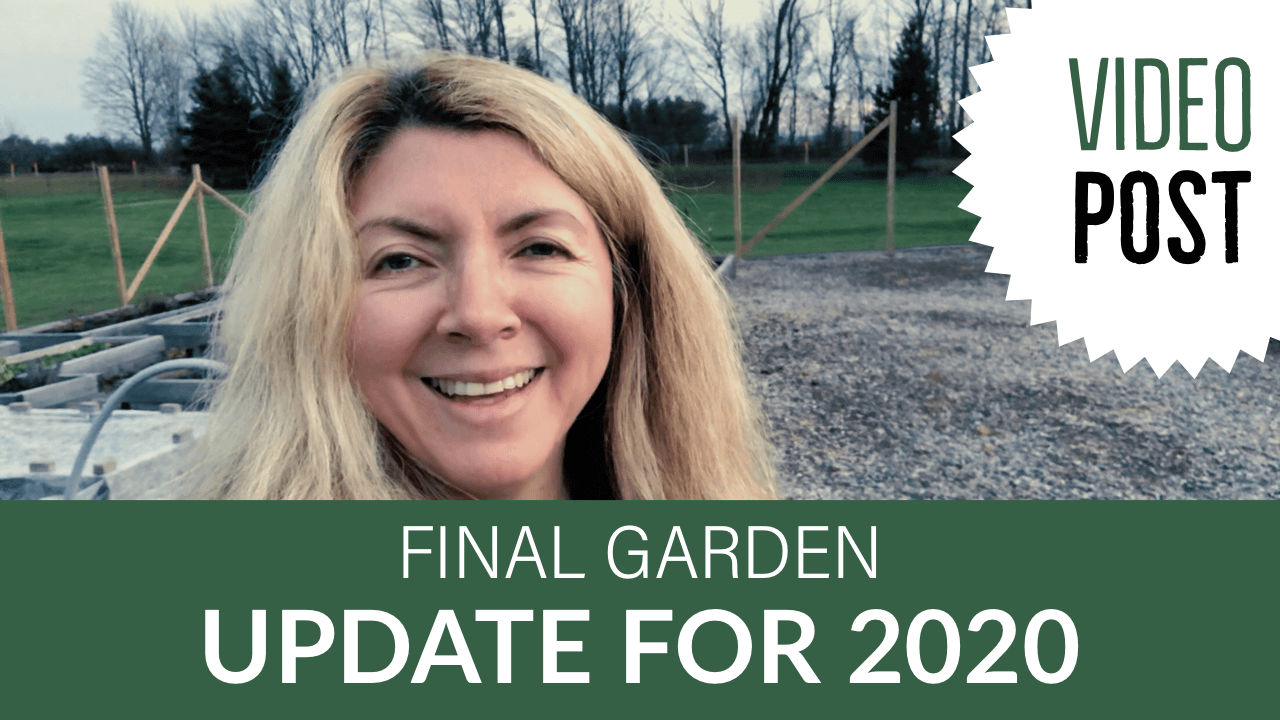 Final Garden Update 2020