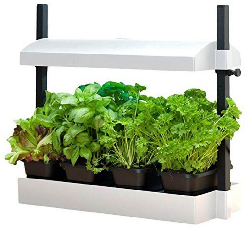 Sunblaster Micro Growlight Garden