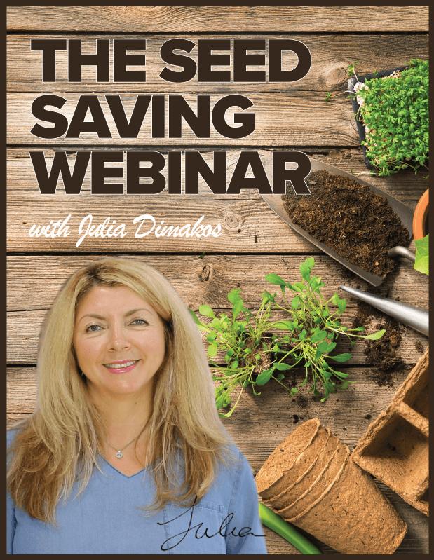 The Seed Saving Webinar with Julia Dimakos